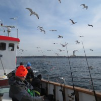 Havsfiske, 60-årspresent